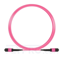 Picture of 5m (16ft) MTP-MTP Patch Cable Female 12 Fibers Type A Plenum (OFNP) OM4 (OM3) 50/125 Multimode Elite, Magenta