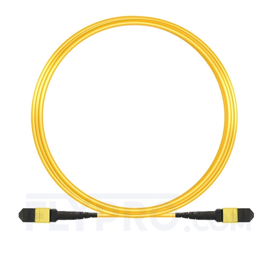 Picture of 10m (33ft) MTP-MTP Patch Cord Female 12 Fibers Type B Plenum (OFNP) OS2 9/125 Single Mode Elite, Yellow