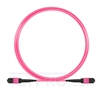 Picture of 3m (10ft) MTP-MTP Patch Cord Male 12 Fibers Type B Plenum (OFNP) OM4 (OM3) 50/125 Multimode Elite, Magenta