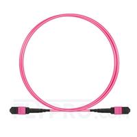 صورة 2M (7ft) MTP أنثى 12 Fibers Type B Plenum (OFNP) OM4 (OM3) 50/125 Multitode Elite Trunk Cable، Magenta