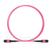 Picture of 1.5m (5ft) MTP-MTP Patch Cable Female 12 Fibers Type B Plenum (OFNP) OM4 (OM3) 50/125 Multimode Elite, Magenta
