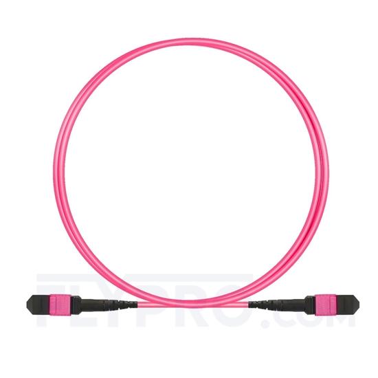 Picture of 1.5m (5ft) MTP-MTP Patch Cable Female 12 Fibers Type B Plenum (OFNP) OM4 (OM3) 50/125 Multimode Elite, Magenta