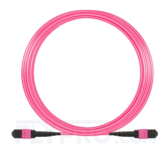 Picture of 15m (49ft) MTP-MTP Patch Cable Female 12 Fibers Type A Plenum (LSZH) OM4 (OM3) 50/125 Multimode Elite, Magenta