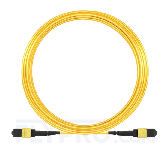 Picture of 15m (49ft) MTP-MTP Patch Cable Female 12 Fibers Type A Plenum (OFNP) OS2 9/125 Single Mode Elite, Yellow