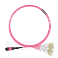 Picture of 3m (10ft) MTP Male to 6 LC UPC Duplex 12 Fibers Type A Plenum (OFNP) OM4 (OM3) 50/125 Multimode Elite Breakout Cable, Magenta
