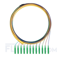 Picture of 1.5m (5ft) LC APC 12 Fibers OS2 Single Mode Bunch PVC (OFNR) 0.9mm Fiber Optic Pigtail