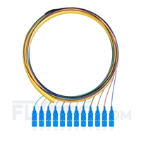 Picture of 1.5m (5ft) SC UPC 12 Fibers OS2 Single Mode Bunch PVC (OFNR) 0.9mm Fiber Optic Pigtail